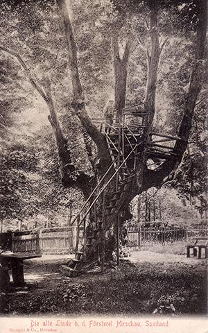 Штенгель и Ко. Stengel & Co 1906