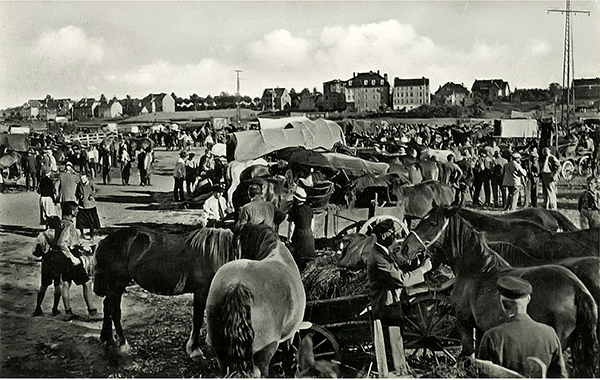 Лошадиный рынок в Велау 1930-е