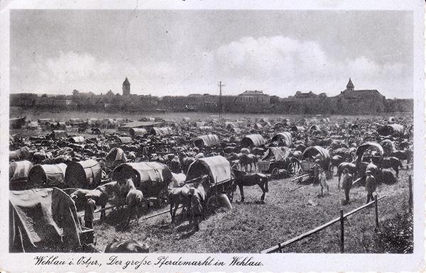 Лошадиный рынок в Велау 1942