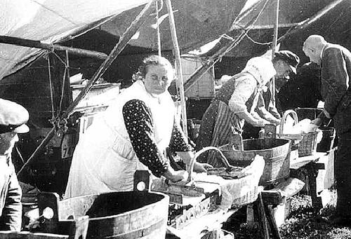 Fischfrauen und Aalhaendler Wehlauer Pferdemarkt