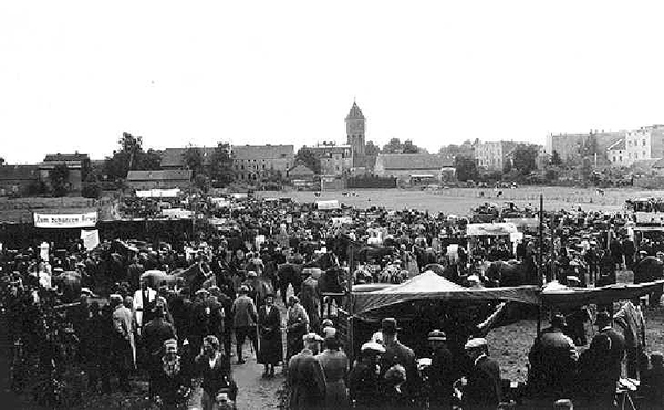 Лошадиный рынок в Велау Pferdemarkt in Wehlau 1938