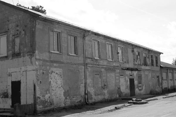 Тимирязево 2010