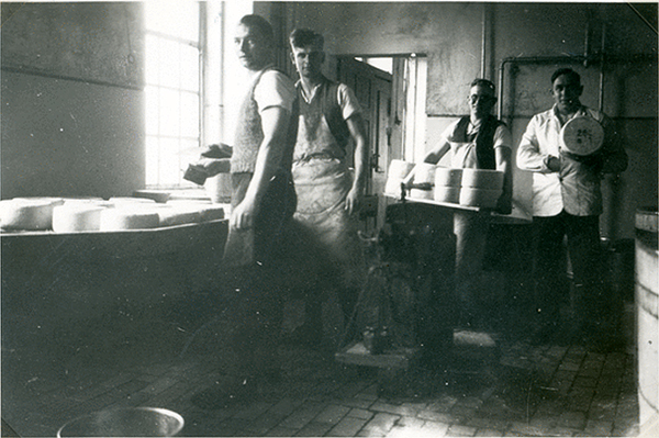 Тильзитский сыр Sausseningken