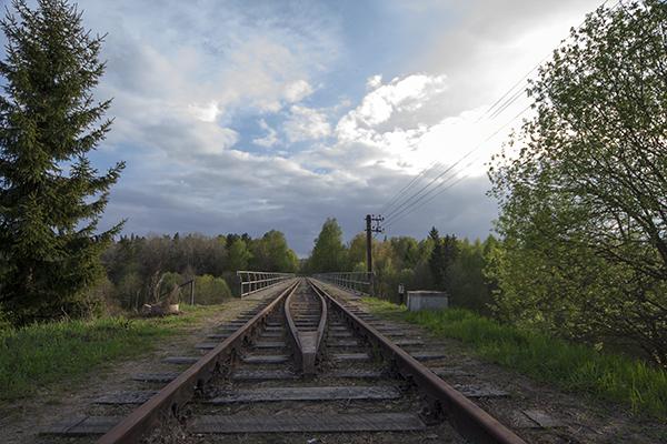 Железные дороги Роминтской пущи Токаревка-2010