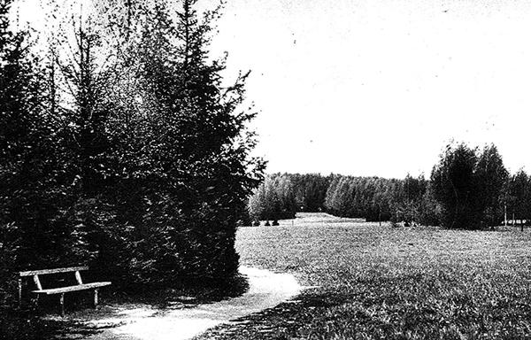 Парк Фихтенвальде park fichtenwalde gumbinnen