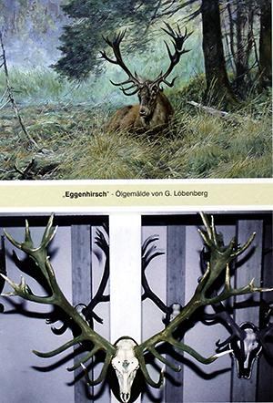Gerhard Loebenberg_Eggenhirsch