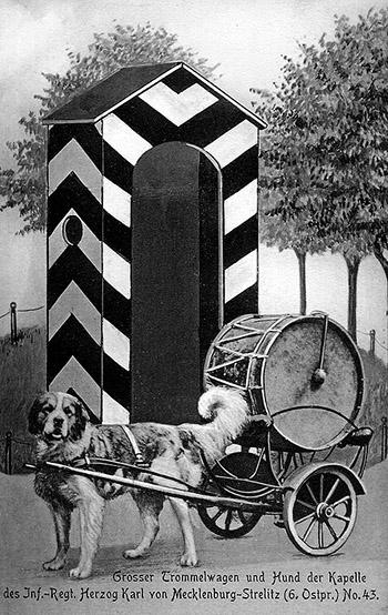 Gross Trommelwagen mit Hund