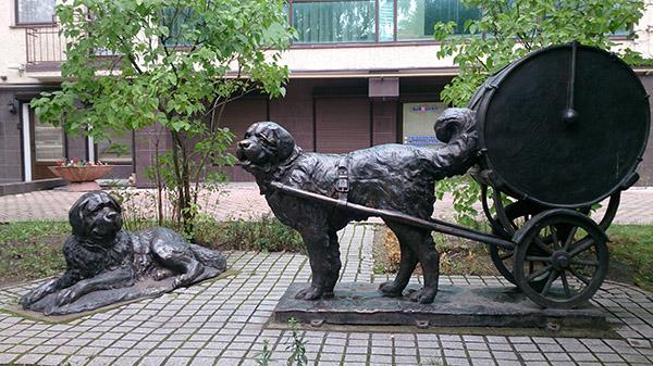 Paukenhund 43 Inf-Regiment Denkmal Kaliningrad барабанные собаки
