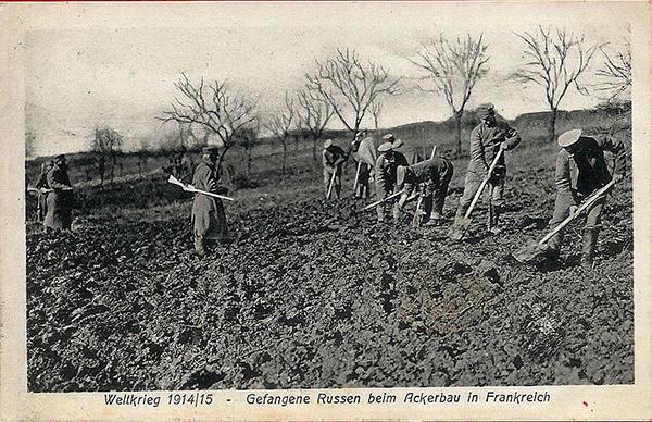 Gefangene Russen 1916 пропаганда на почтовых открытках