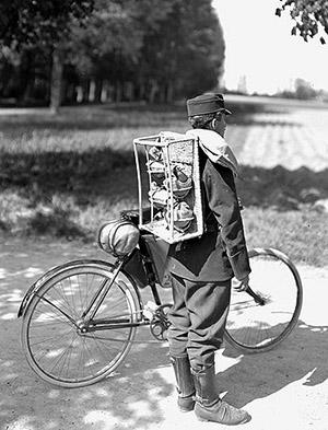Swiss Radfahrer 1914-1918
