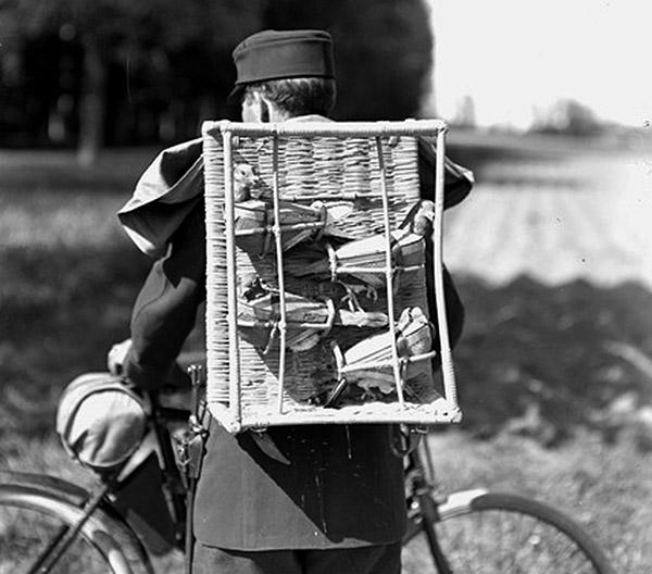 Swiss Radfahrer Patrouillenkorb mit Brieftauben