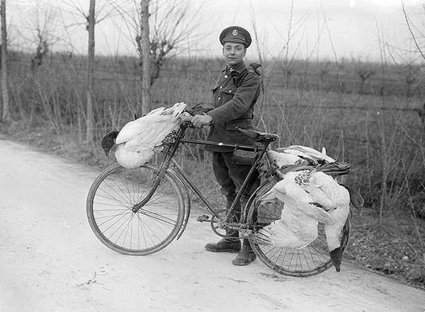 военные велосипедисты