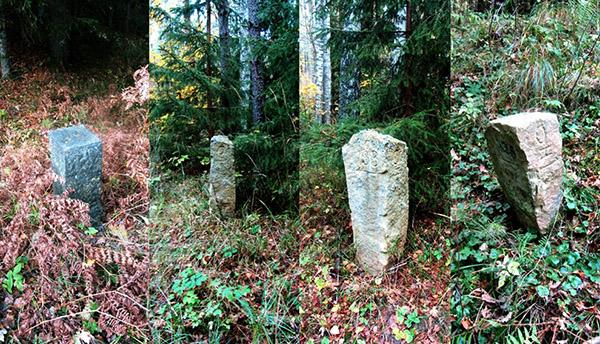 rominten_stein_133 лесоустройство роминтской пущи