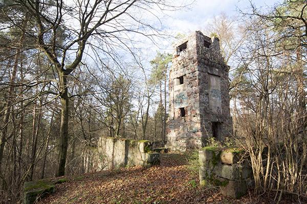Dzialdowo - Bismarck Tower 2010