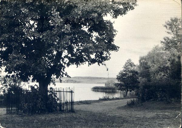 brassendorf-kleszczewo-abstimmungslinde-1958